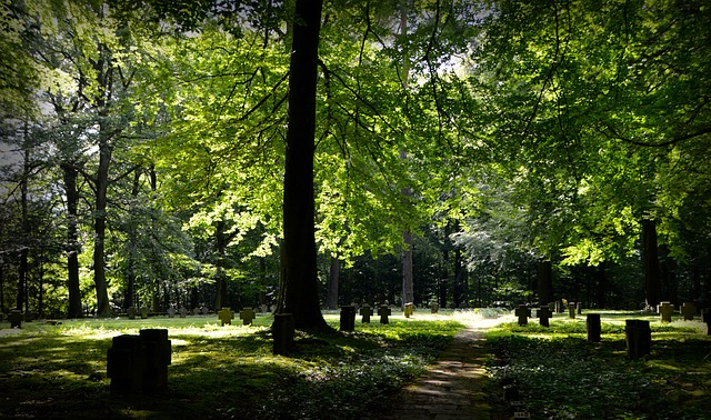 130-Ideen_Friedhof